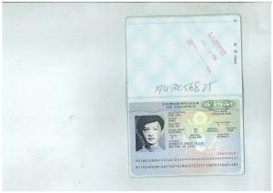 Baruch F1-Visa 96 Fall